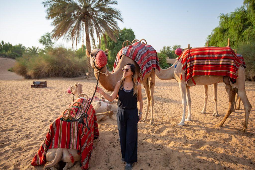 Camel trekking at Al Maha Resort in Dubai.