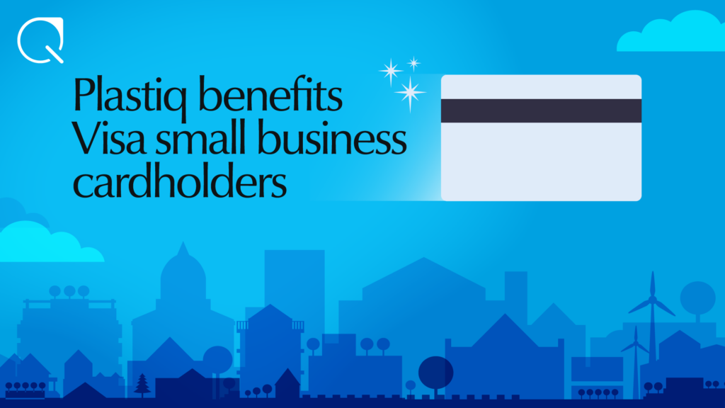 Visa small business cardholders